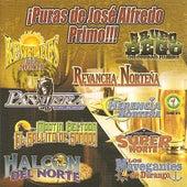 ¡Puras De José Alfredo Primo!!! by Various Artists