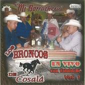 Mi Borrachera Tololoche by Los Broncos De Cosala