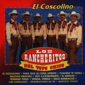 El Coscolino by Los Rancheritos Del Topo Chico