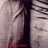 Weed by Chris Whitley