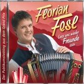 Lass uns wieder Freunde sein von Florian Fesl