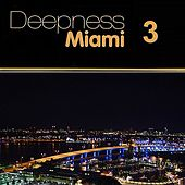 Deepness Miami 3 by Various Artists