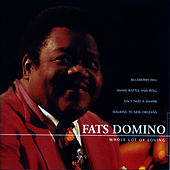 Whole Lot Of Loving by Fats Domino