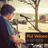 Rui Veloso e Amigos by Filipa Cardoso