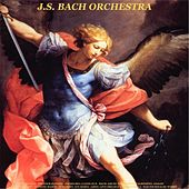 Vivaldi: The Four Seasons - Pachelbel: Canon in D - Bach: Air on the G String - Albinoni: Adagio - Mendelssohn: Wedding March - Schubert: Ave Maria - Listz: Love Dream & La Campanella - Walter Rinaldi: Works de Johann Sebastian Bach