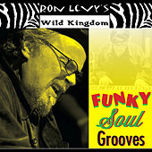 Funky Soul Grooves by Ron Levy's Wild Kingdom