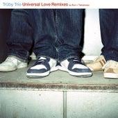 Universal Love von Truby Trio