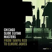 Saga Blues: Chicago Slide Guitar Masters