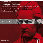 Beethoven: Variations sur le duo