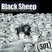 Black Sheep by 501