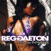 Reggaeton - La Posion del Bellaqueo by Various Artists