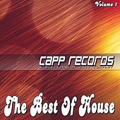 The Best Of House, Vol 1 de Various Artists