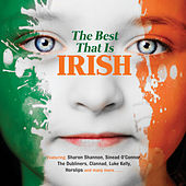 The Best That Is Irish de Various Artists