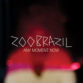 Any Moment Now by Zoo Brazil