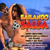 Bailando Salsa by Various Artists