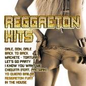 Reggaeton Hits de Various Artists