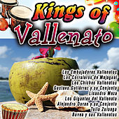 Kings Of Vallenato by Various Artists