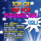 Top of the Pop International Vol. 1 de Various Artists