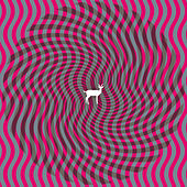 Cryptograms by Deerhunter