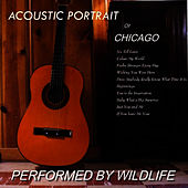 Acoustic Portrait of Chicago de Wildlife
