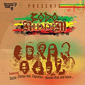 Bodo Riddim by Various Artists