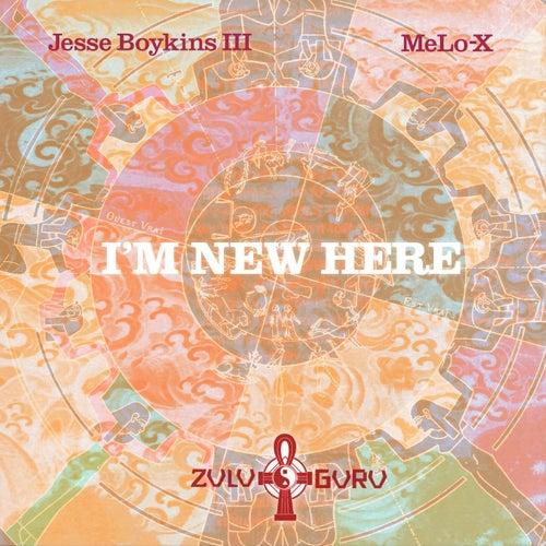 I'm New Here by Jesse Boykins III