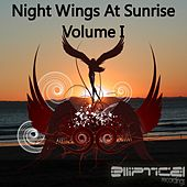 Night Wings At Sunrise Volume I - EP by Various Artists