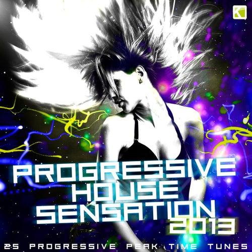 Progressive House Sensation 2013 (25 Progressive Peak Time Tunes) by Various Artists