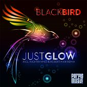 Just Glow von Blackbird