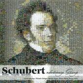 Mehrstimmige Gesänge - Duette, Terzette, Quartette by Various Artists