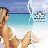 Pure Spa Caribbean de Nick White