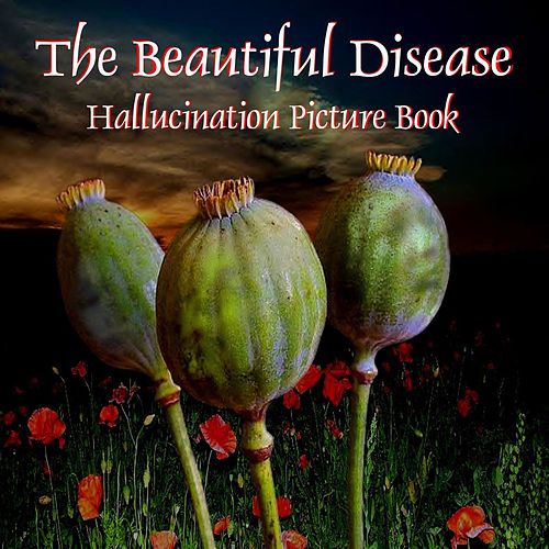 Hallucination Picture Book by The Beautiful Disease