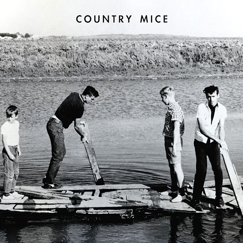 Twister by Country Mice