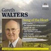 Walters, G.: Can Y Gallon / Little Suite / Violin Sonata / Berceuse / Poesies Du Soir by Various Artists