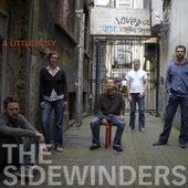 A Little Busy by Sidewinders