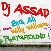 Playground de DJ Assad