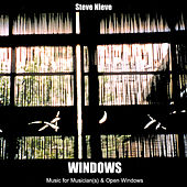 Windows by Steve Nieve