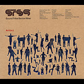 Artifact by STS9 (Sound Tribe Sector 9)
