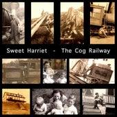 The Cog Railway by Sweet Harriet