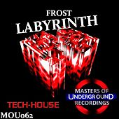 Labyrinth by Frost