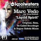 Liquid Spirit (feat. Tricia Kelshall) by Marc Vedo