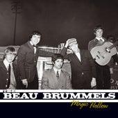 Magic Hollow de The Beau Brummels