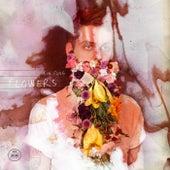 Flowers by Sin Fang