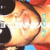 Dig In de Lenny Kravitz