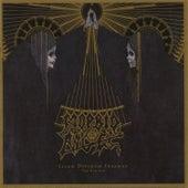 Illud Divinum Insanus - the Remixes de Morbid Angel