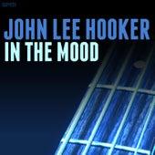 In the Mood de John Lee Hooker