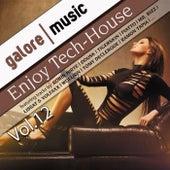 Enjoy Tech-House Vol. 12 by Various Artists
