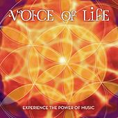 Voice of Life by Various Artists