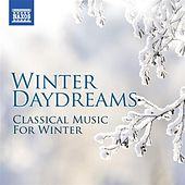 Winter Daydreams - Classical Music for Winter de Various Artists
