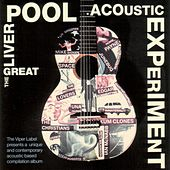 The Great Liverpool Acoustic Experiment by Various Artists
